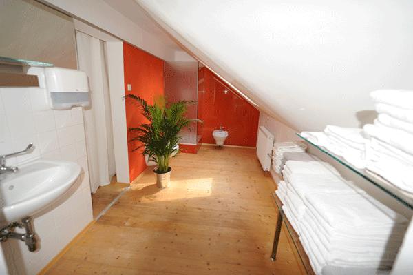 Tantra Massage Vorraum mit Dusche und Bidet
